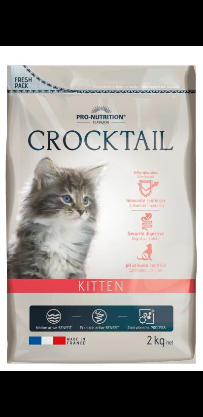Crocktail adulte chaton