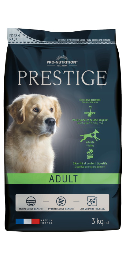 Prestige Adult