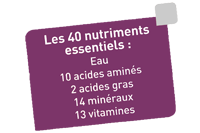 40 nutriments